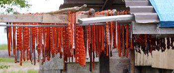 Salmon strips drying in New Stuyahok.