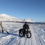 Biking the Iditarod