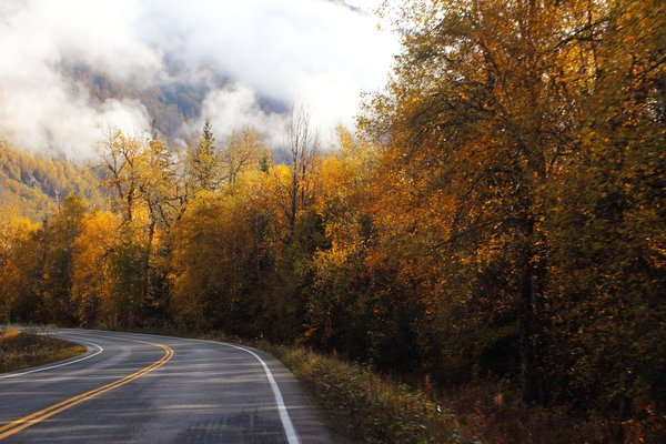 The road to Hanes, decorated for fall.