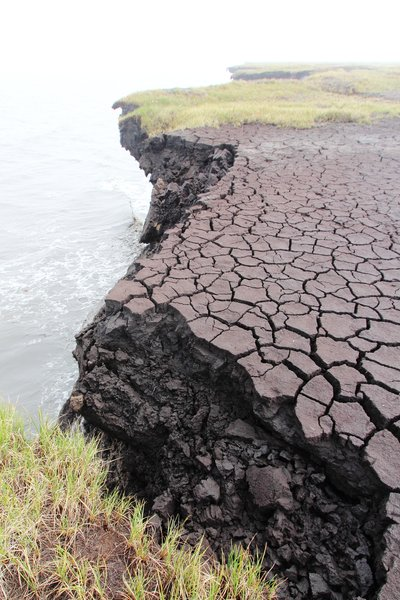 A drained lake cracks as it dries, teetering on the edge of permafrost overhanging the arctic ocean.