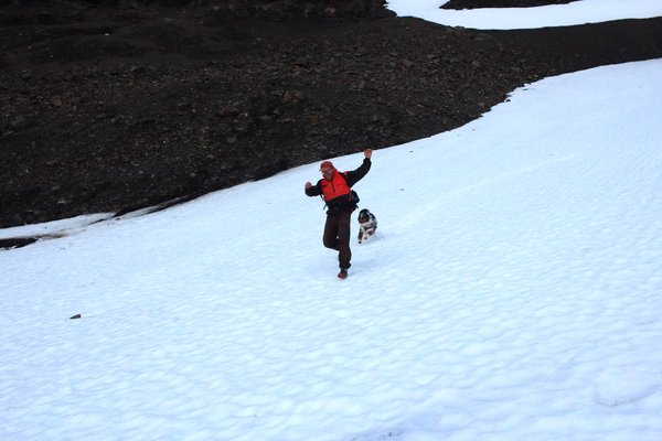 Man, dog, gravity, and snow.