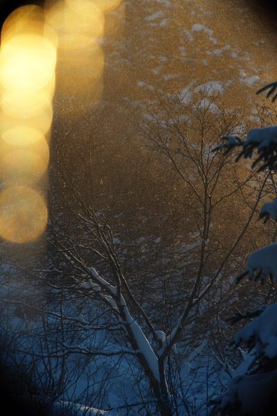 A glimpse of winter sun from our window