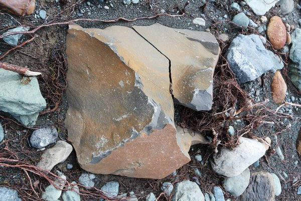 This small boulder is marked by impacts with rocks carried by a tsunami.