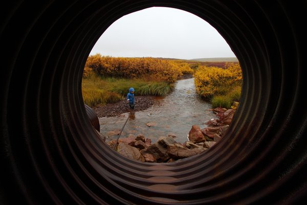 Katmai throws rocks in a stream while I stay dry in a culvert.
