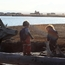 Kids on Driftwood