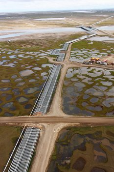 Pipelines crossing tundra west of Prudhoe Bay in Alaska's Arctic.