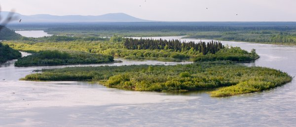 Islands in the Nushagak River, near the Mulchatna River confluence.