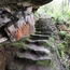 Overhung stone steps