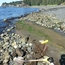 Sampling intertidal peat
