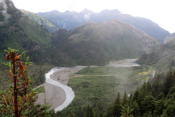 Winding through giant gravel-bars, the Taylor River looks like it's not always this small.