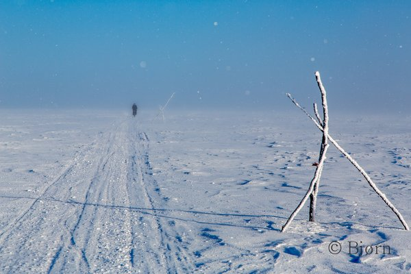 In an endless sea of white, trail markers are critical for traveler navigation.