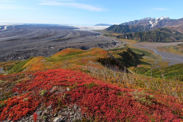 A fall-colored ridge on the Samovar Hills provides a view over the expanse of Malaspina Glacier