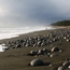 "Walking Alaska's ""Lost Coast"""
