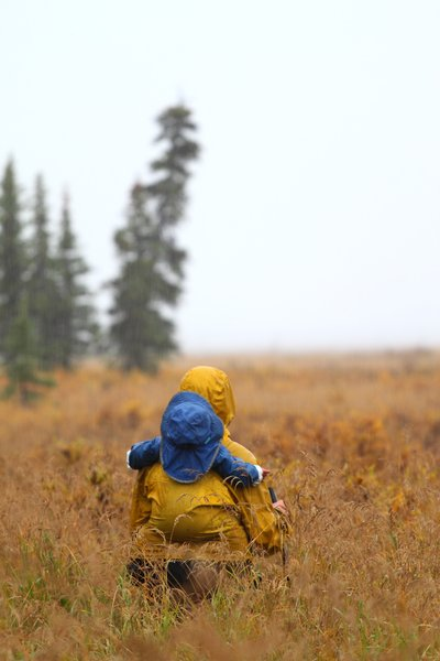 Riding on mom in the chill fog near the Noatak River